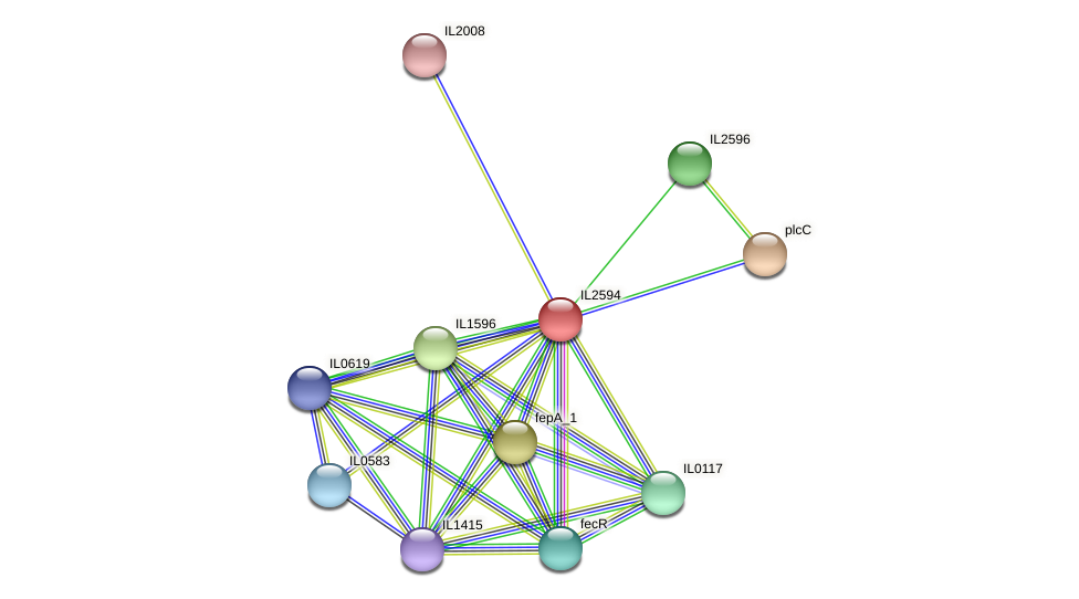 IL2594 protein (Idiomarina loihiensis) - STRING interaction network
