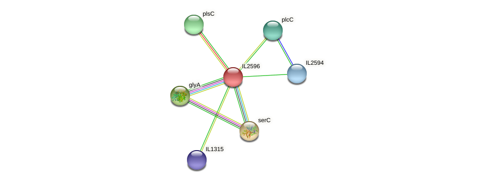 IL2596 protein (Idiomarina loihiensis) - STRING interaction network