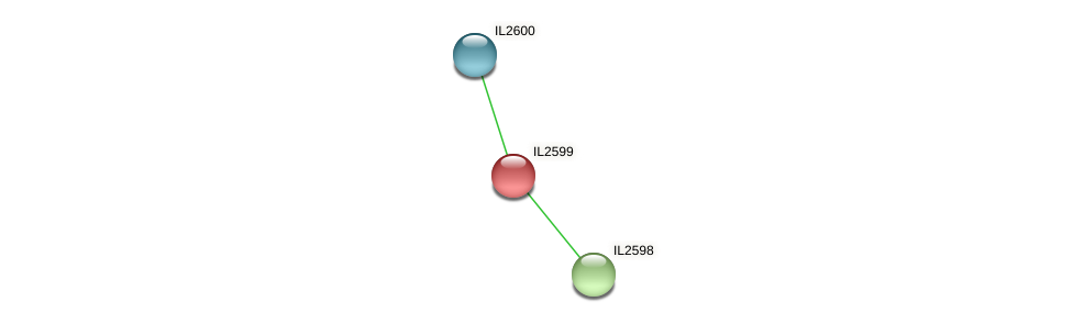 IL2599 protein (Idiomarina loihiensis) - STRING interaction network