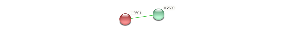 IL2601 protein (Idiomarina loihiensis) - STRING interaction network