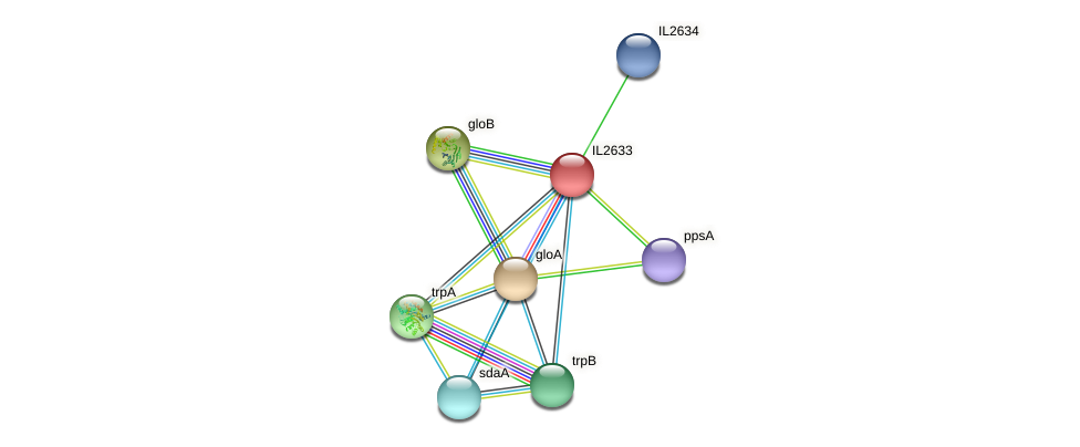 IL2633 protein (Idiomarina loihiensis) - STRING interaction network