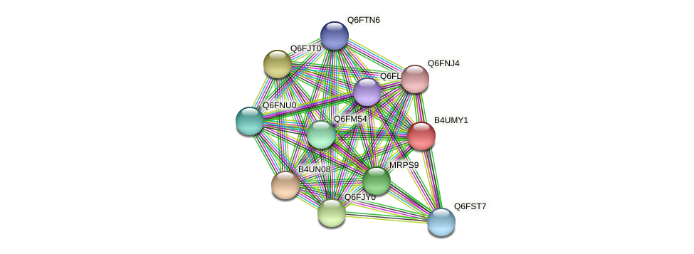 XP_002999522.1 protein (Candida glabrata) - STRING interaction network