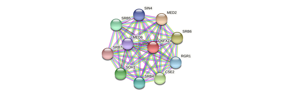 MED3 protein (Candida glabrata) - STRING interaction network
