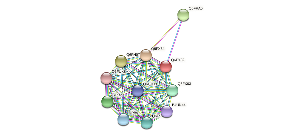 XP_444911.1 protein (Candida glabrata) - STRING interaction network