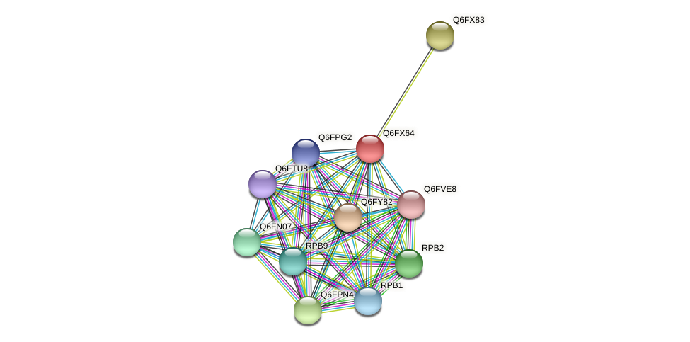 XP_444990.1 protein (Candida glabrata) - STRING interaction network