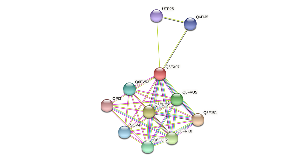 XP_444999.1 protein (Candida glabrata) - STRING interaction network