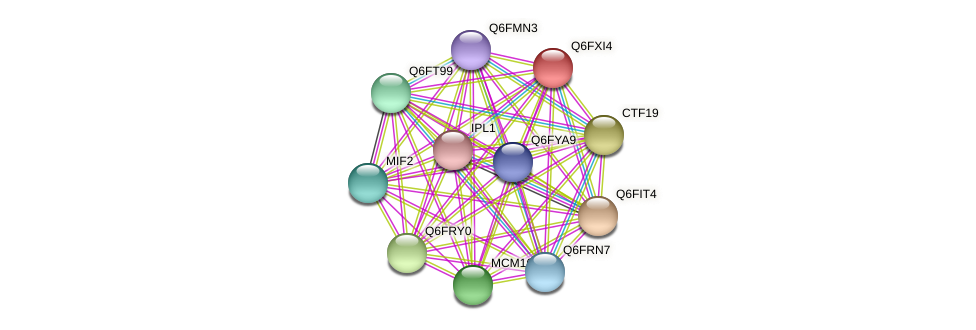 XP_445087.1 protein (Candida glabrata) - STRING interaction network