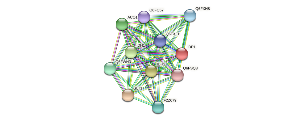 IDP1 protein (Candida glabrata) - STRING interaction network