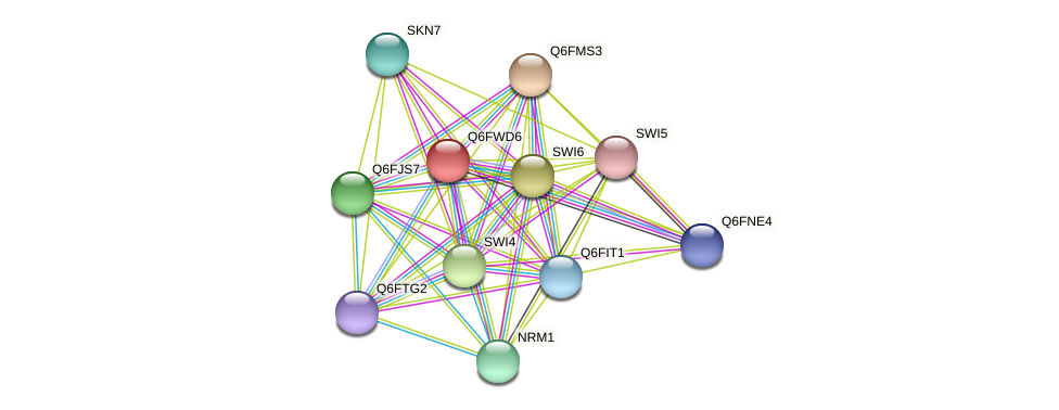 XP_445458.1 protein (Candida glabrata) - STRING interaction network