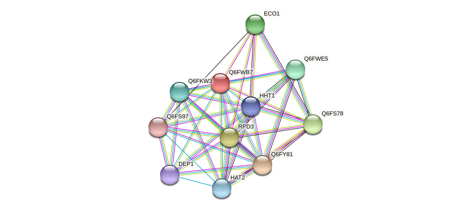 XP_445477.1 protein (Candida glabrata) - STRING interaction network
