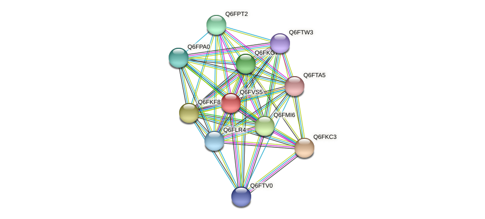 XP_445669.1 protein (Candida glabrata) - STRING interaction network