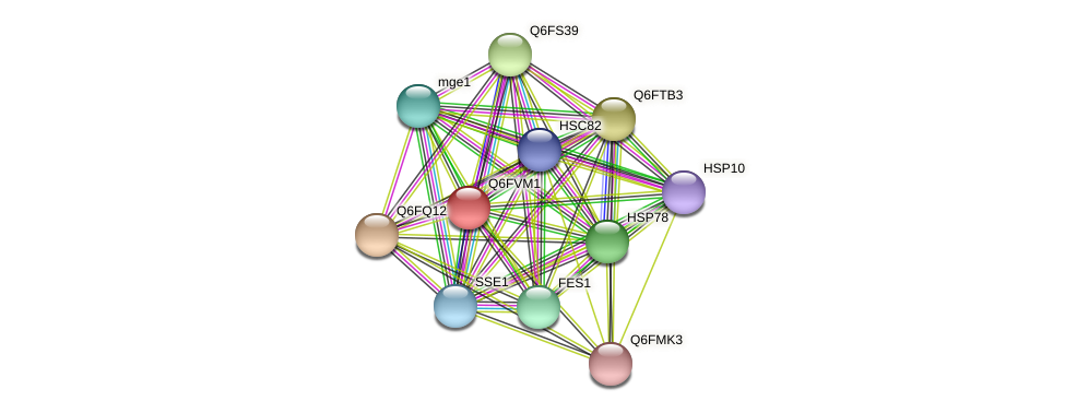 XP_445723.1 protein (Candida glabrata) - STRING interaction network