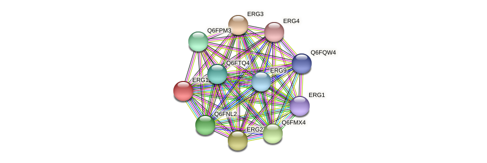 ERG11 protein (Candida glabrata) - STRING interaction network