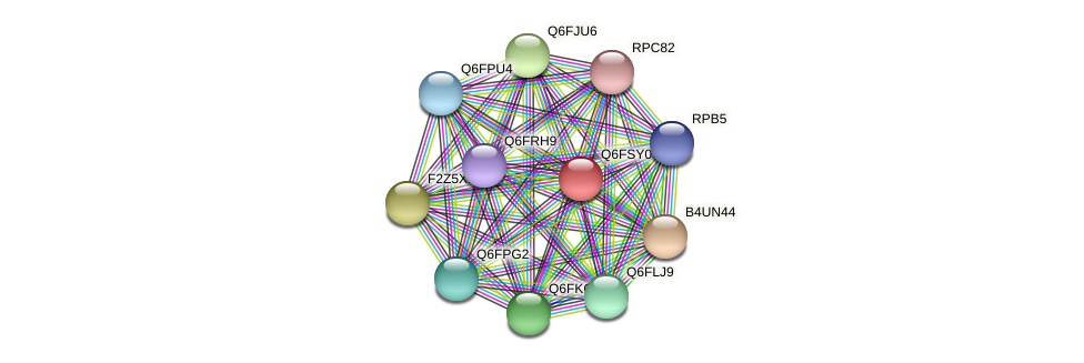 XP_446664.1 protein (Candida glabrata) - STRING interaction network
