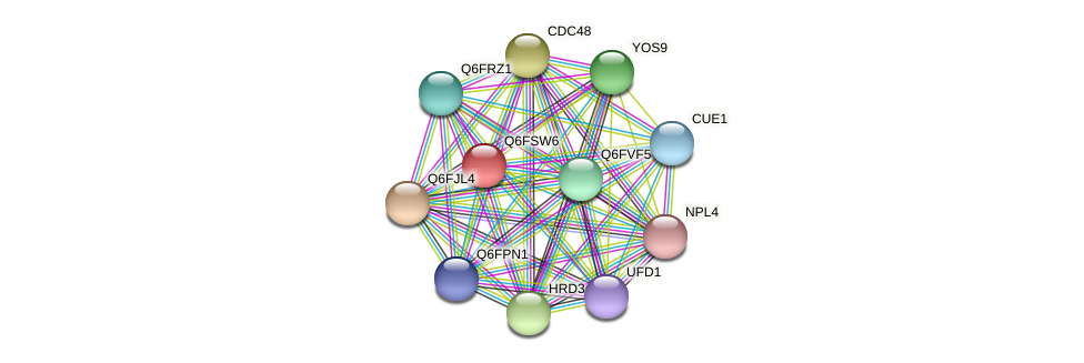 XP_446678.1 protein (Candida glabrata) - STRING interaction network