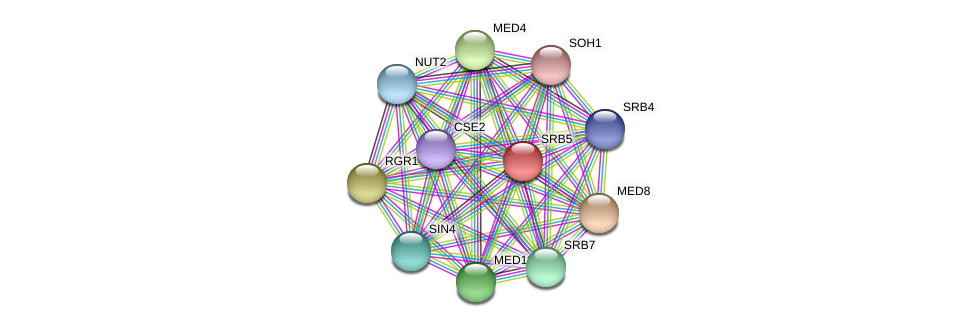 SRB5 protein (Candida glabrata) - STRING interaction network