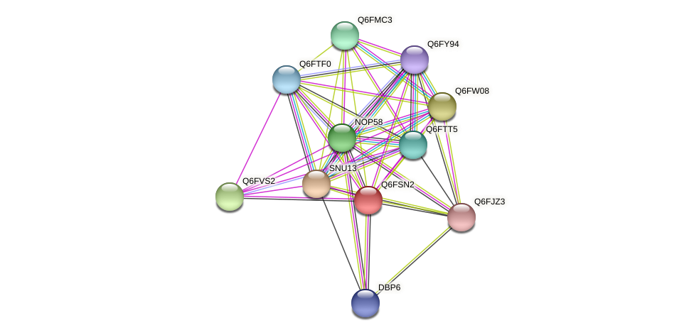 XP_446762.1 protein (Candida glabrata) - STRING interaction network