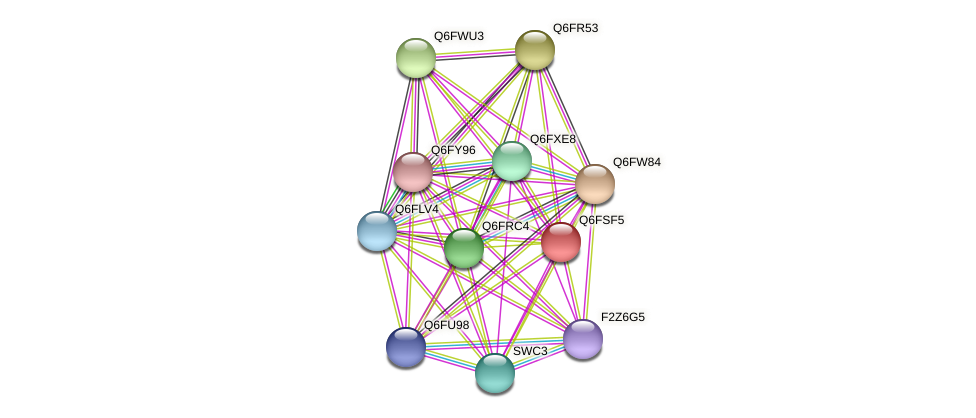 XP_446839.1 protein (Candida glabrata) - STRING interaction network