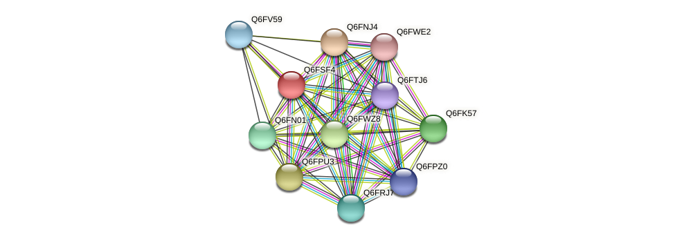 XP_446840.1 protein (Candida glabrata) - STRING interaction network