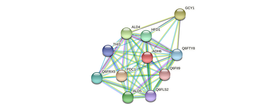 ADH6 protein (Candida glabrata) - STRING interaction network