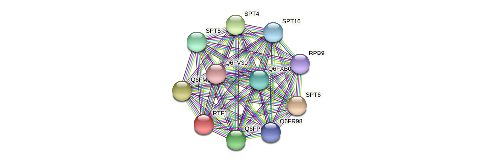 XP_447133.1 protein (Candida glabrata) - STRING interaction network