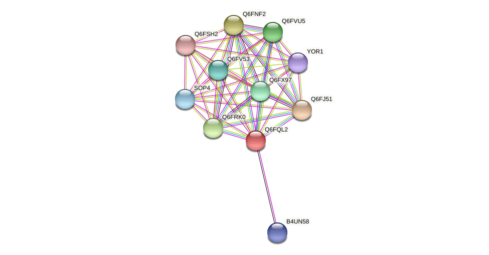 XP_447482.1 protein (Candida glabrata) - STRING interaction network