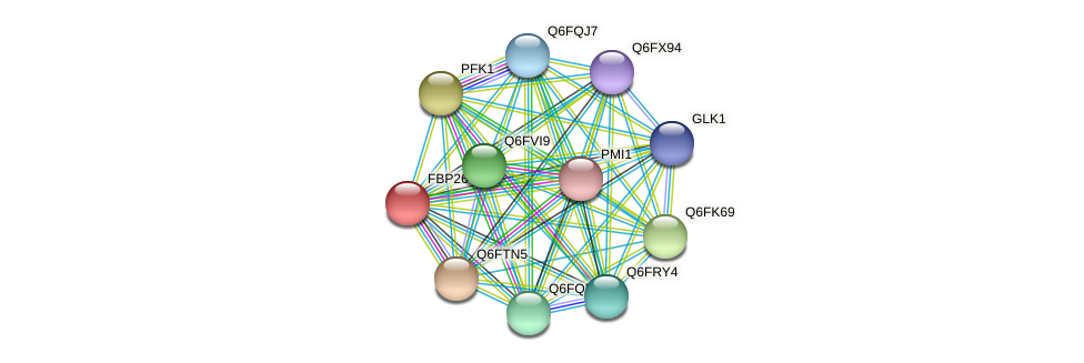 FBP26 protein (Candida glabrata) - STRING interaction network