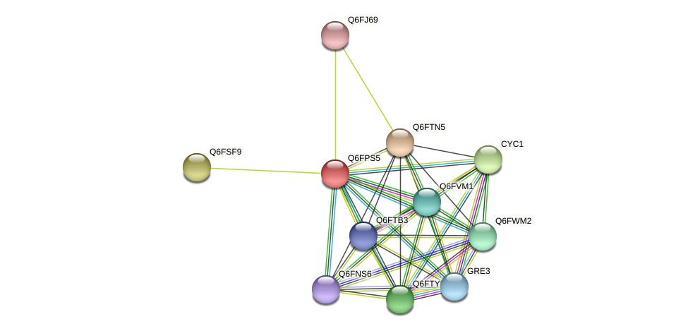 XP_447769.1 protein (Candida glabrata) - STRING interaction network