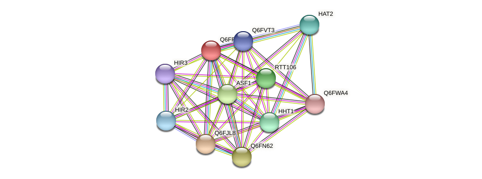 XP_447989.1 protein (Candida glabrata) - STRING interaction network