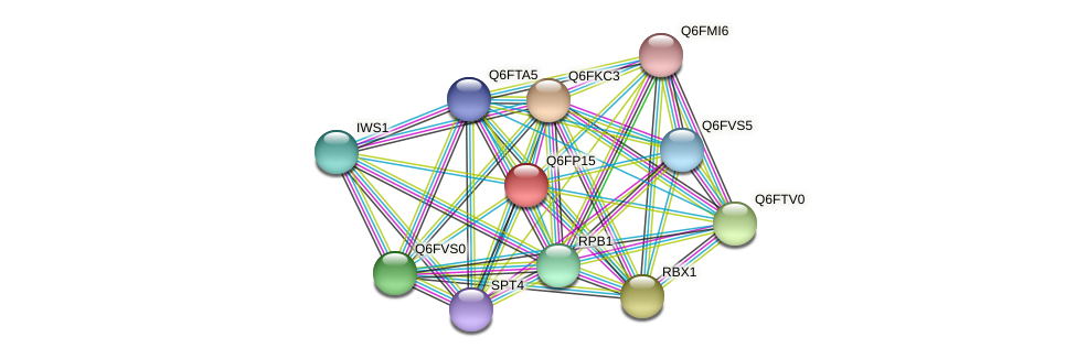 XP_448029.1 protein (Candida glabrata) - STRING interaction network