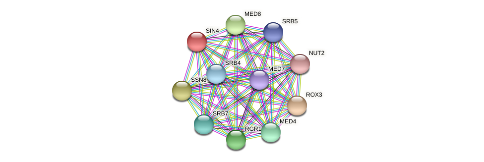 SIN4 protein (Candida glabrata) - STRING interaction network