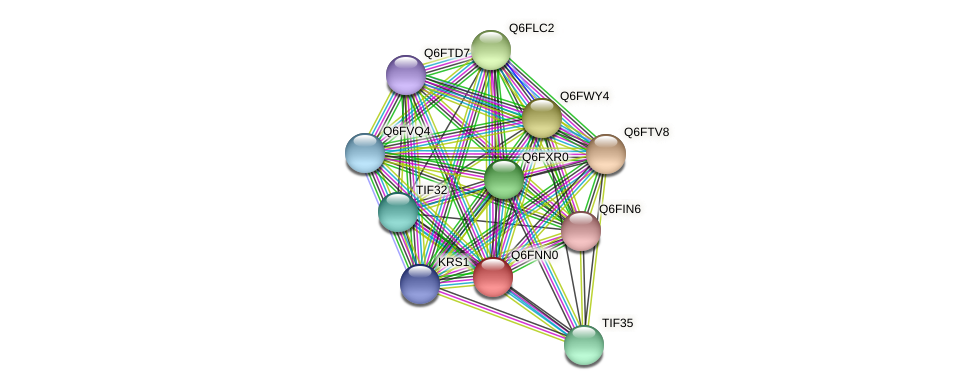 XP_448164.1 protein (Candida glabrata) - STRING interaction network