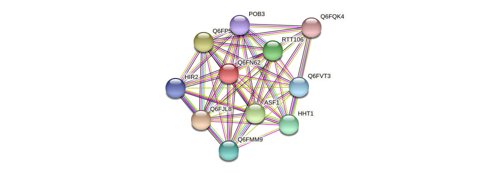 XP_448332.1 protein (Candida glabrata) - STRING interaction network