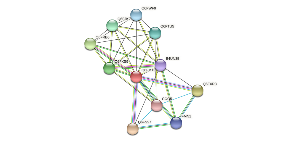 XP_448731.1 protein (Candida glabrata) - STRING interaction network
