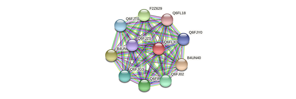 XP_448774.1 protein (Candida glabrata) - STRING interaction network