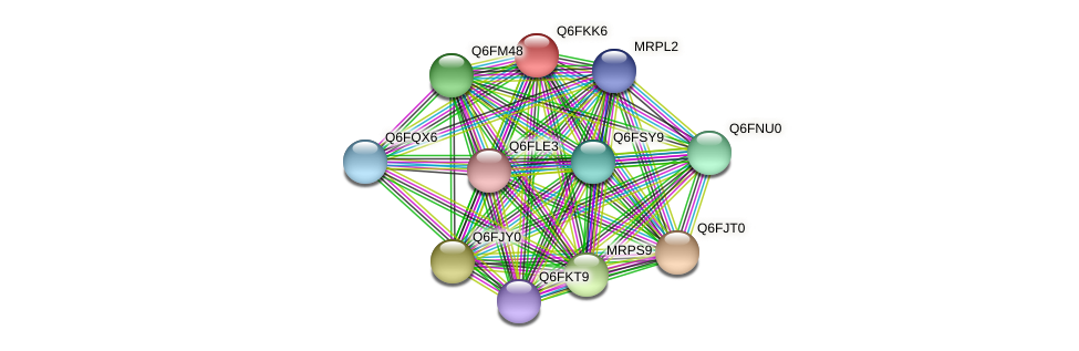 XP_449238.1 protein (Candida glabrata) - STRING interaction network