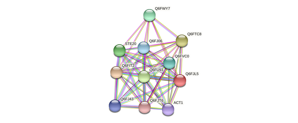 XP_449579.1 protein (Candida glabrata) - STRING interaction network