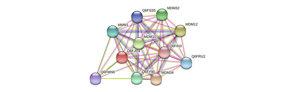 XP_449660.1 protein (Candida glabrata) - STRING interaction network