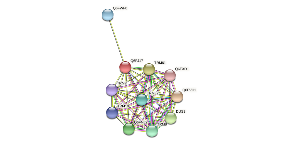 XP_449777.1 protein (Candida glabrata) - STRING interaction network