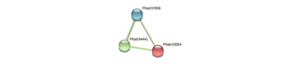 Phatr10054 protein (Phaeodactylum tricornutum) - STRING interaction network