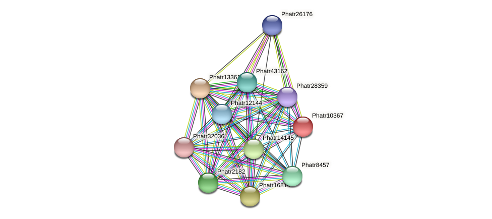 Phatr10367 protein (Phaeodactylum tricornutum) - STRING interaction network