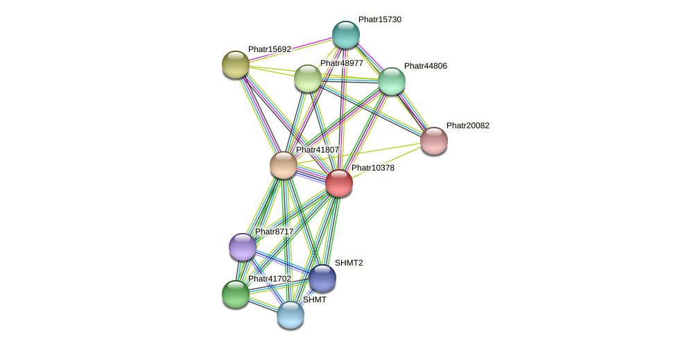 Phatr10378 protein (Phaeodactylum tricornutum) - STRING interaction network