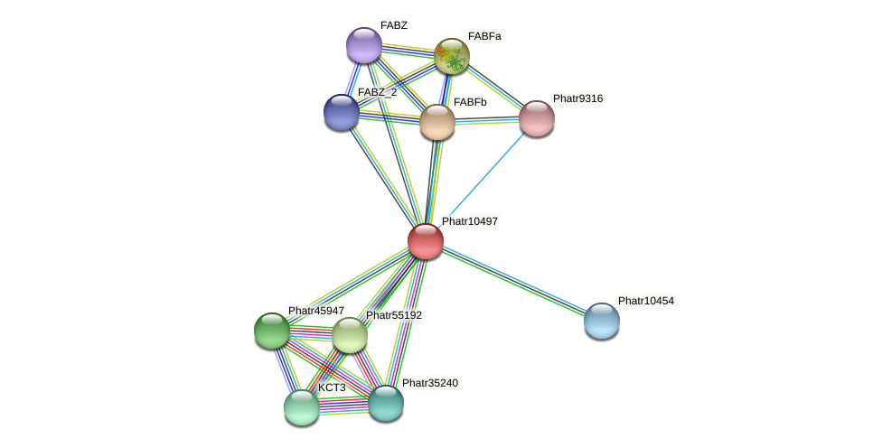 Phatr10497 protein (Phaeodactylum tricornutum) - STRING interaction network