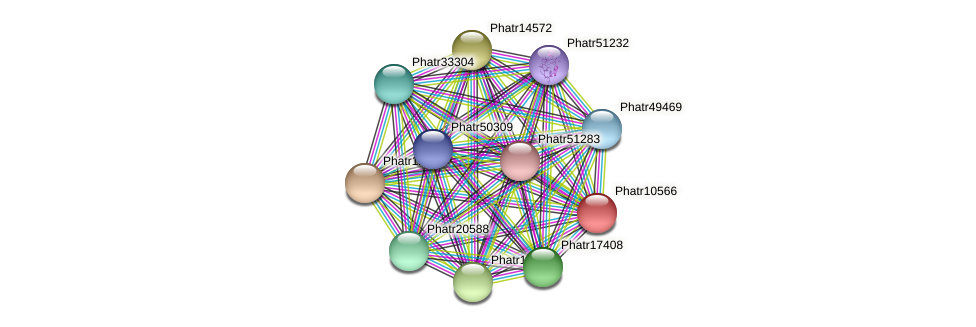 Phatr10566 protein (Phaeodactylum tricornutum) - STRING interaction network