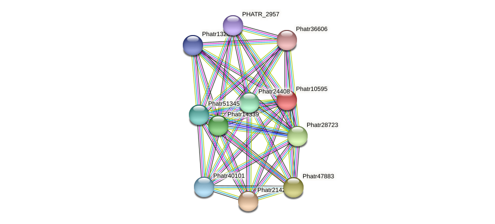 Phatr10595 protein (Phaeodactylum tricornutum) - STRING interaction network