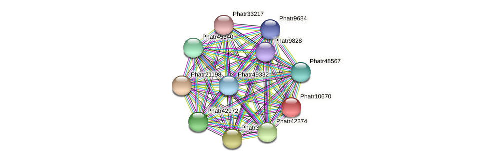 Phatr10670 protein (Phaeodactylum tricornutum) - STRING interaction network