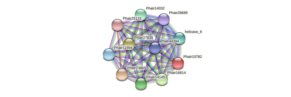 Phatr10782 protein (Phaeodactylum tricornutum) - STRING interaction network