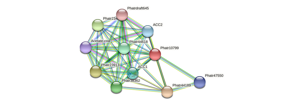 Phatr10799 protein (Phaeodactylum tricornutum) - STRING interaction network