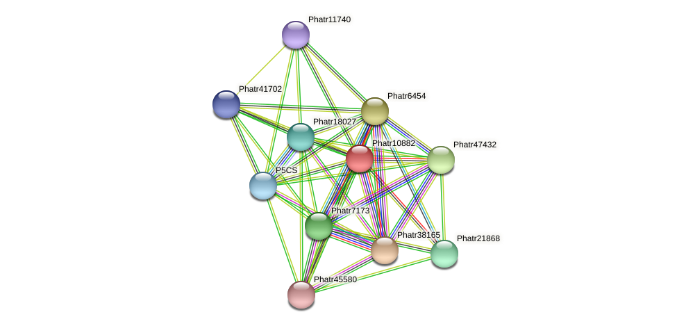 Phatr10882 protein (Phaeodactylum tricornutum) - STRING interaction network
