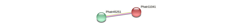 Phatr11041 protein (Phaeodactylum tricornutum) - STRING interaction network